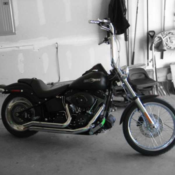 Softail 18 Inch Apes
