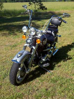 Springer Softail with 16 inch HCC Apes installed